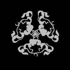 Logo SRDNBM